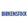 Birkesntock